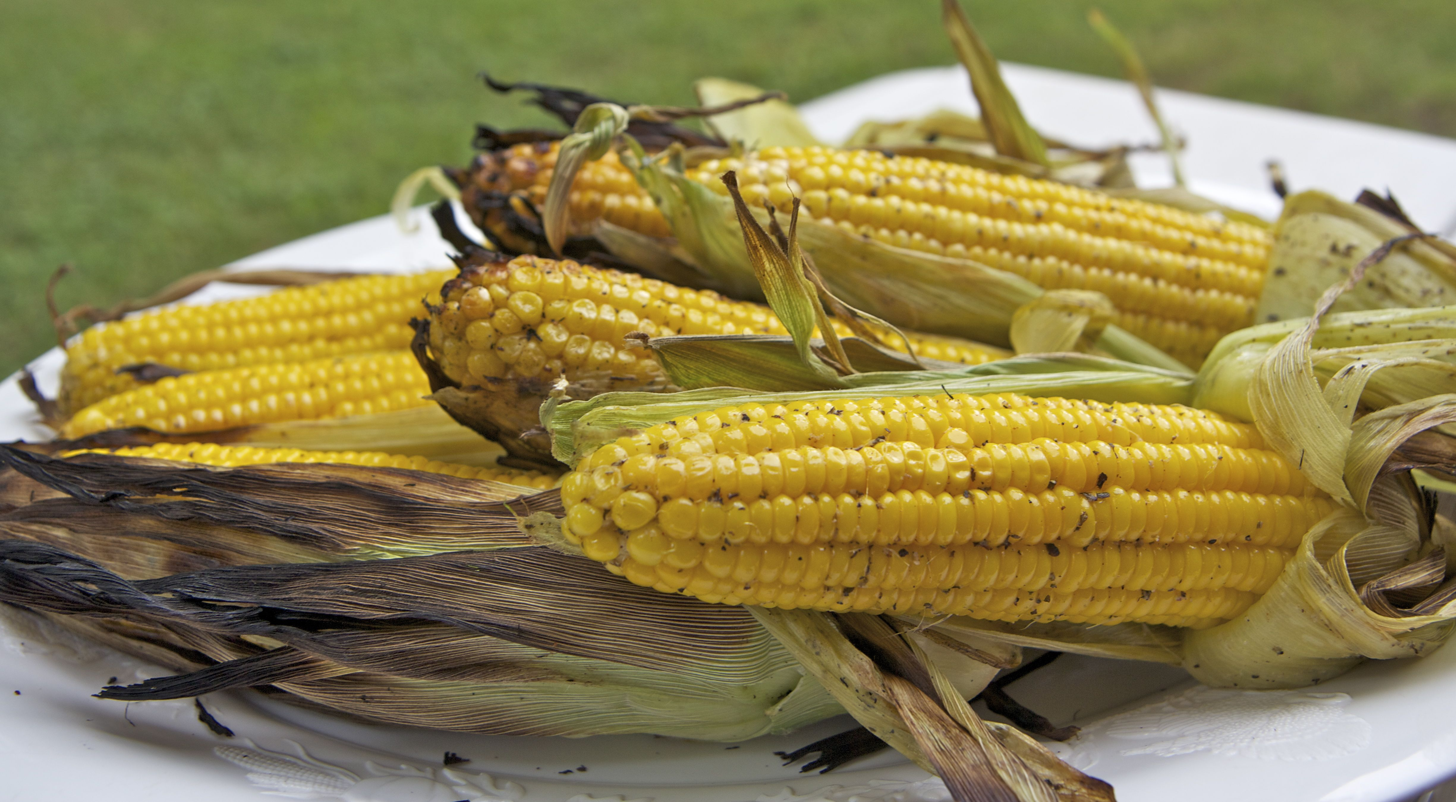Grilled Corn on the Cob | Recipes Squared